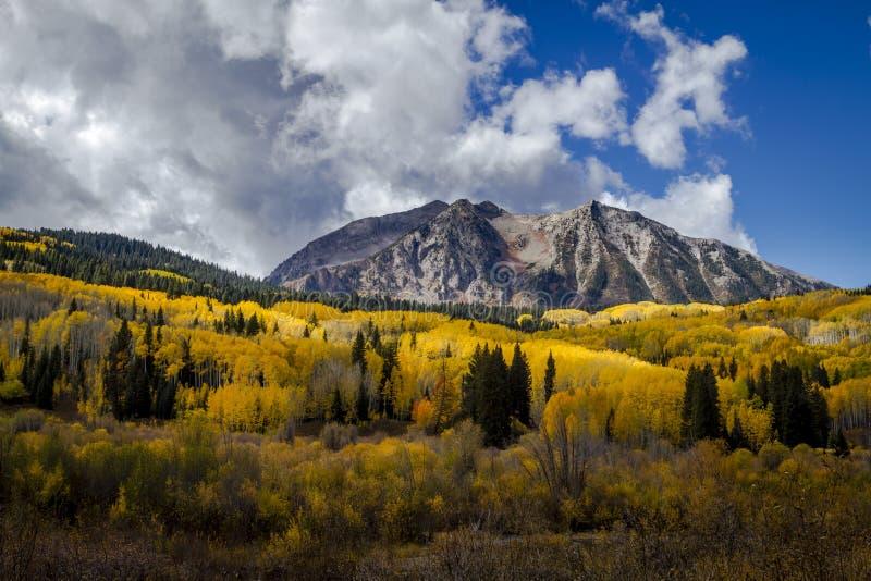 Autumn Color em San Juan e Rocky Mountains de Colorado fotos de stock