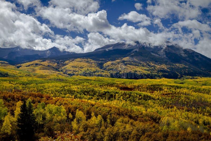 Autumn Color i San Juan och Rocky Mountains av Colorado royaltyfria bilder