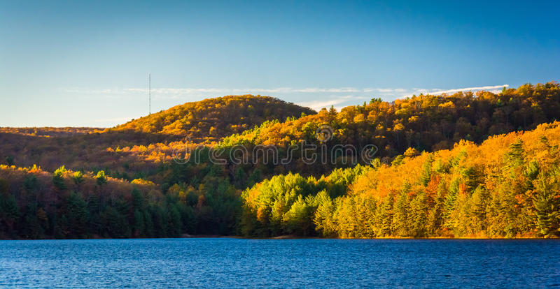 Autumn color at Long Pine Run Reservoir, in Michaux State Forest. Pennsylvania royalty free stock photo