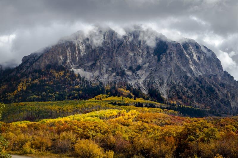 Autumn Color op Kebler-Pas dichtbij Kuifbutte Colorado stock foto's