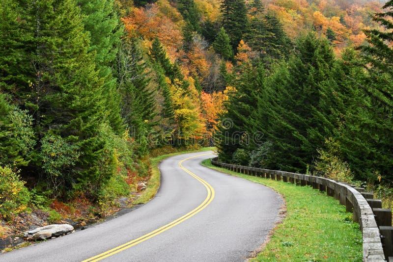 Autumn Color på Blue Ridge Parkway i North Carolina, USA royaltyfri foto