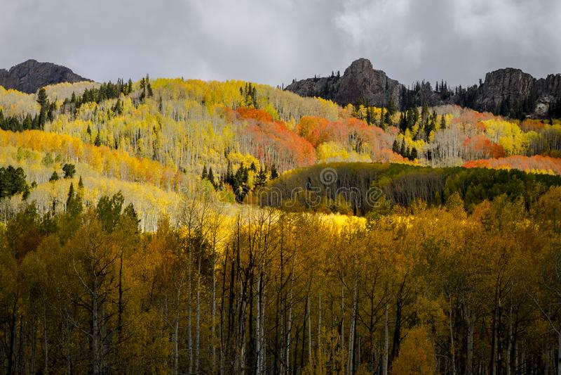 Autumn Color in San Juan und Rocky Mountains von Colorado stockbild
