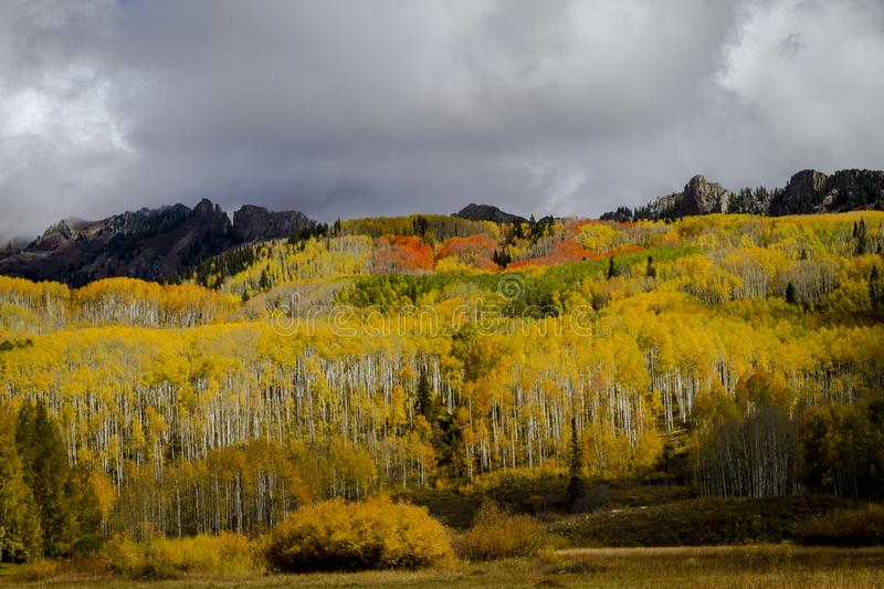 Autumn Color in San Juan und Rocky Mountains von Colorado lizenzfreie stockfotos