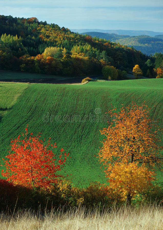 Autumn color spectrum. Landscape and forests royalty free stock photography