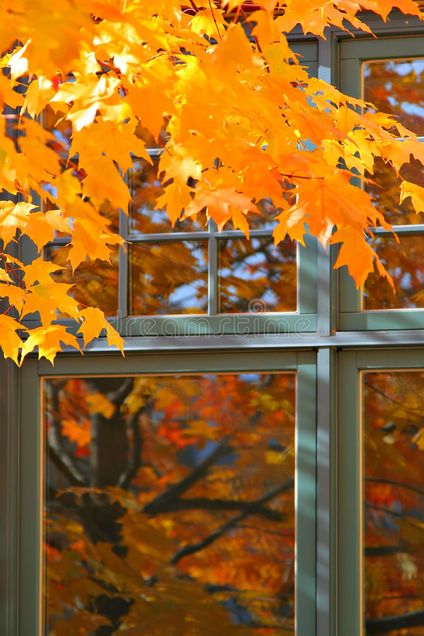 Download Autumn Color by the Window stock image. Image of fall - 5500955