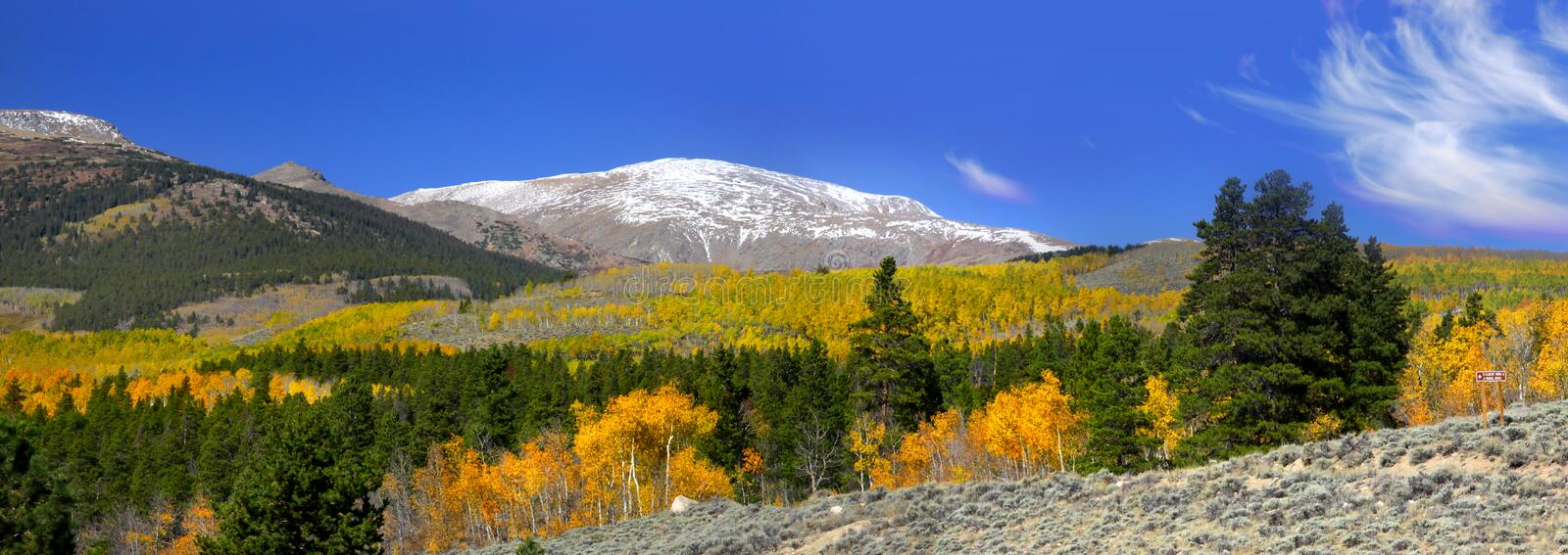 Download Autumn in Colorado stock photo. Image of yellow, mountain - 15372230