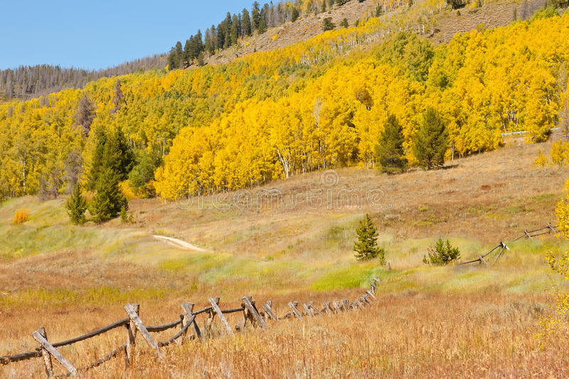 Download Autumn in Colorado stock photo. Image of nobody, grass - 27013726