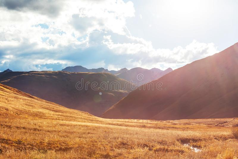 Autumn in Colorado. Colorful yellow autumn in Colorado, United States. Fall season royalty free stock photography