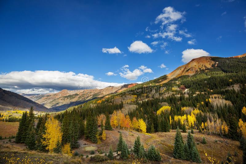 Autumn in Colorado. Colorful yellow autumn in Colorado, United States. Fall season royalty free stock image
