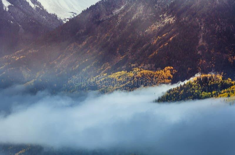 Autumn in Colorado stock photography