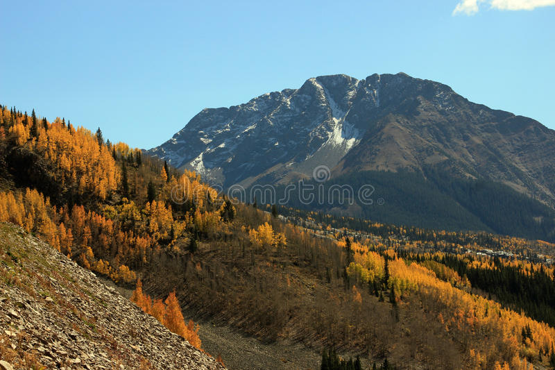 Download Autumn Colorado Mountains stock image. Image of beauty - 26903339