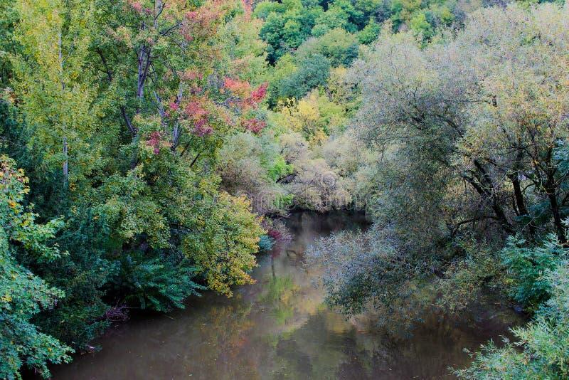 Autumn trees reflecting on river. Autumn colored trees reflecting on both shores of a river stock photo