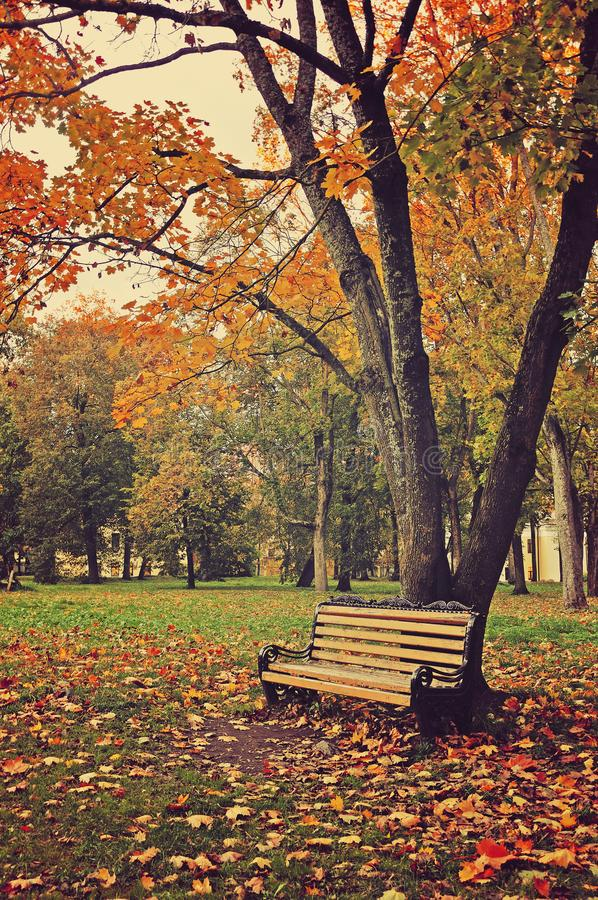 Autumn. Lonely Sad Woman In A Headphones Walking In A Park