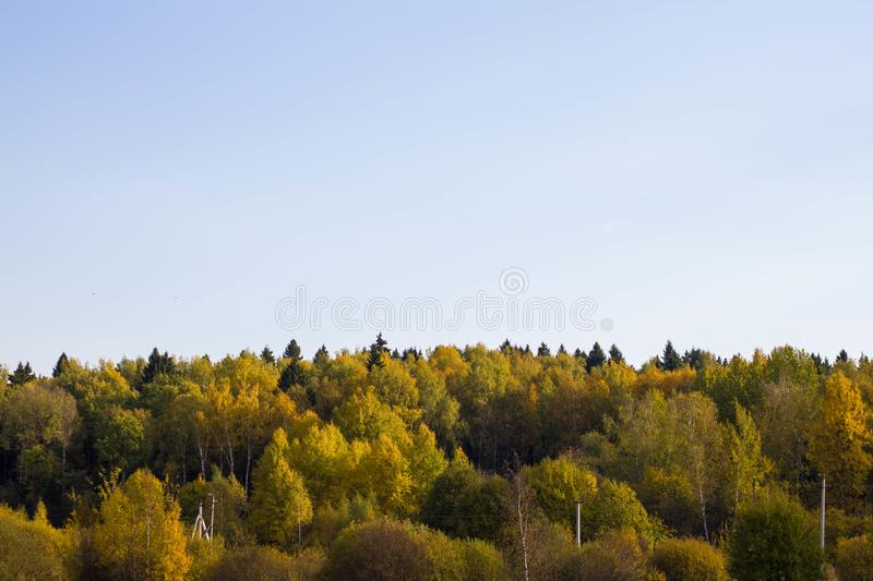 Autumn colorful landscape view of the forest with yellow and orange trees and cloudy sky in Russia. Nature in Russia royalty free stock photography