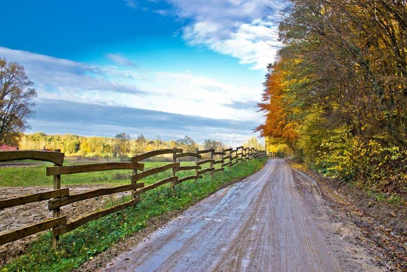 Autumn colorful mountain dirt road stock photo