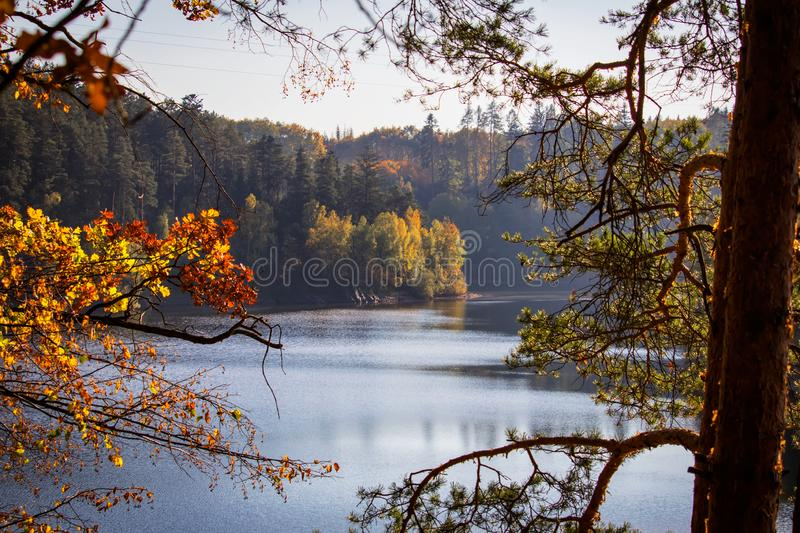 Autumn colorful trees on dam Rimov with reflection on water through branch, Czech landscape.  stock image