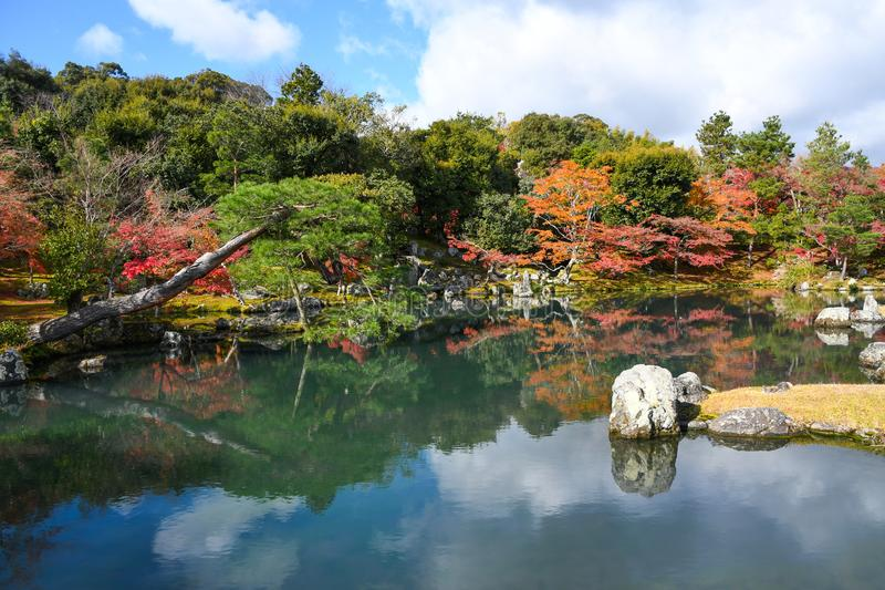 Autumn trees and pond in Tenryuji Temple stock image