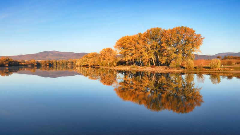 Autumn colorful trees under morning sunlight reflecting in tranquil river stock images