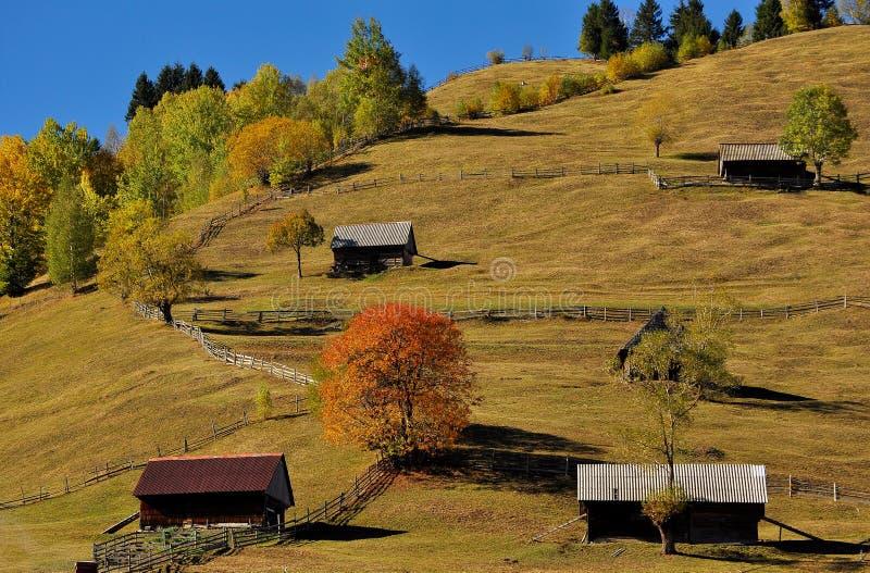 Autumn colors. Beautiful landscape of the countryside of Romania in autumn.Moieciu de Sus stock photography