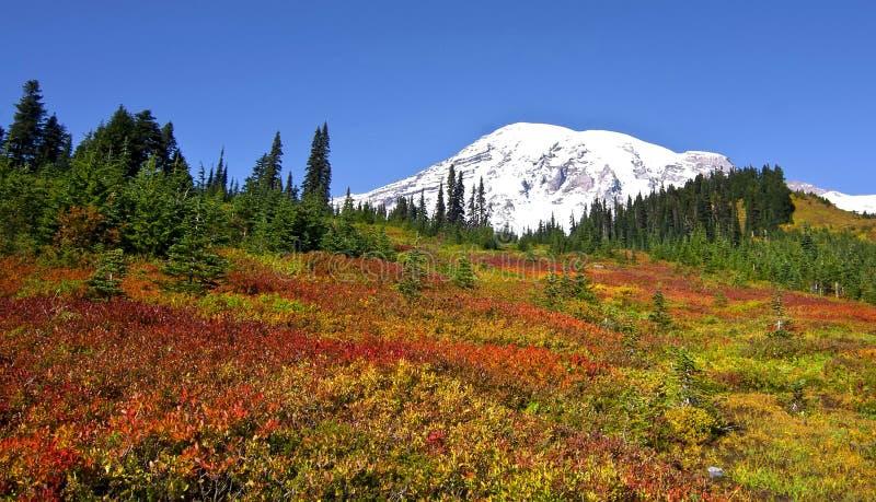 Autumn Colors photo stock