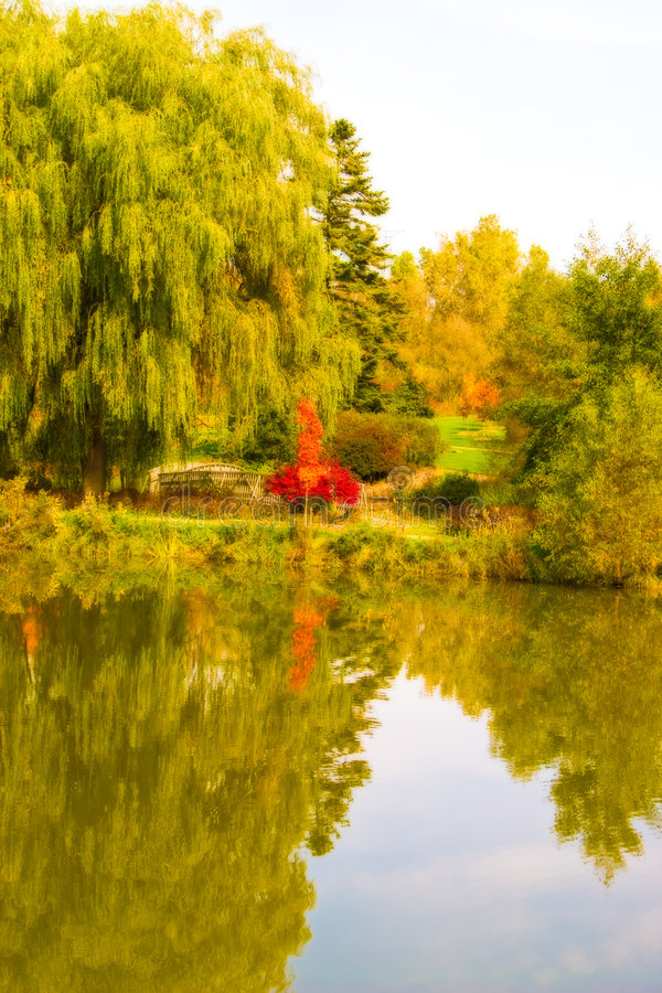 Free Autumn Colors Stock Images - 6538304