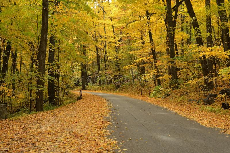 Autumn Colors Along een Landelijke Weg stock afbeelding