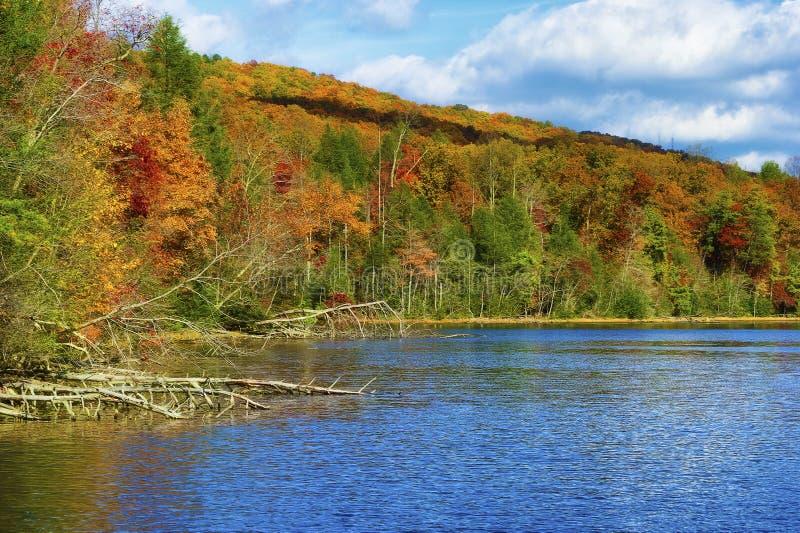Autumn Colors Along le rivage du lac mountain de baies photographie stock libre de droits