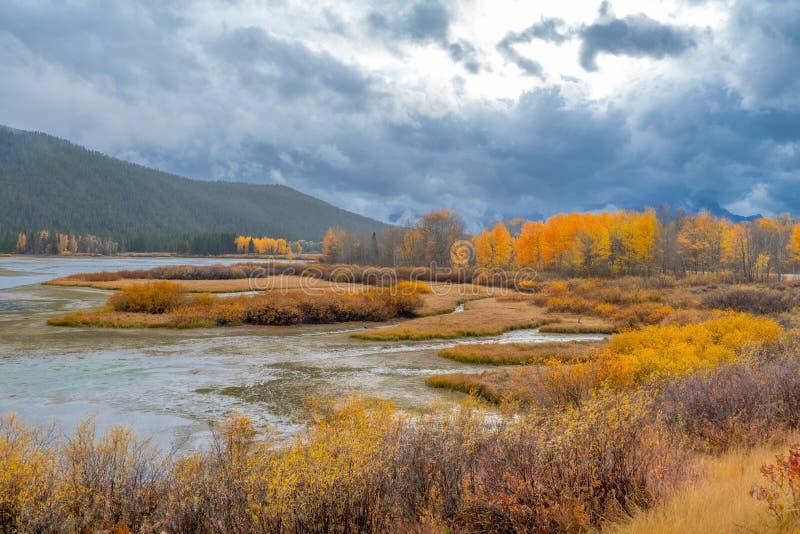 Autumn Colors av berget och sjön i den storslagna Tetonsen, nationalpark royaltyfri bild