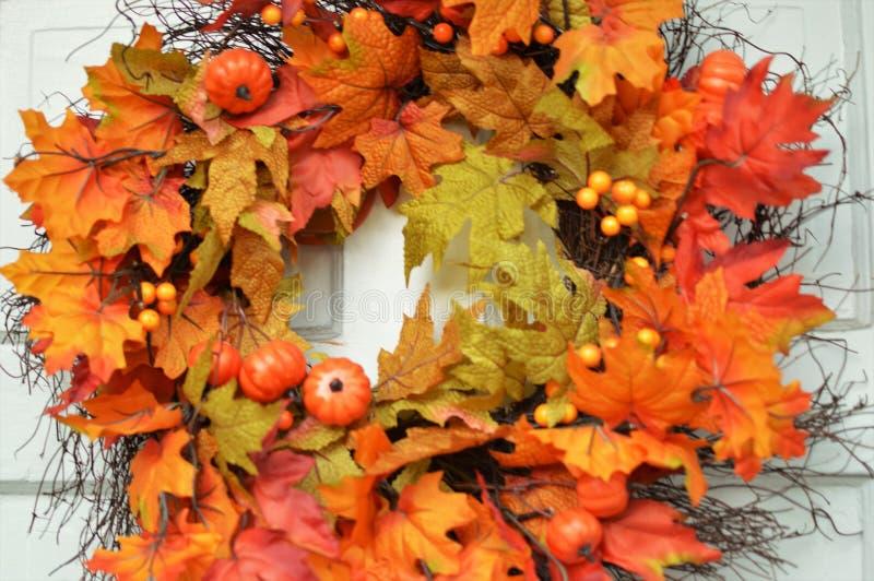 Autumn Colors Background Orange Yellow-de Decoratie van Dalingsbladeren royalty-vrije stock afbeeldingen