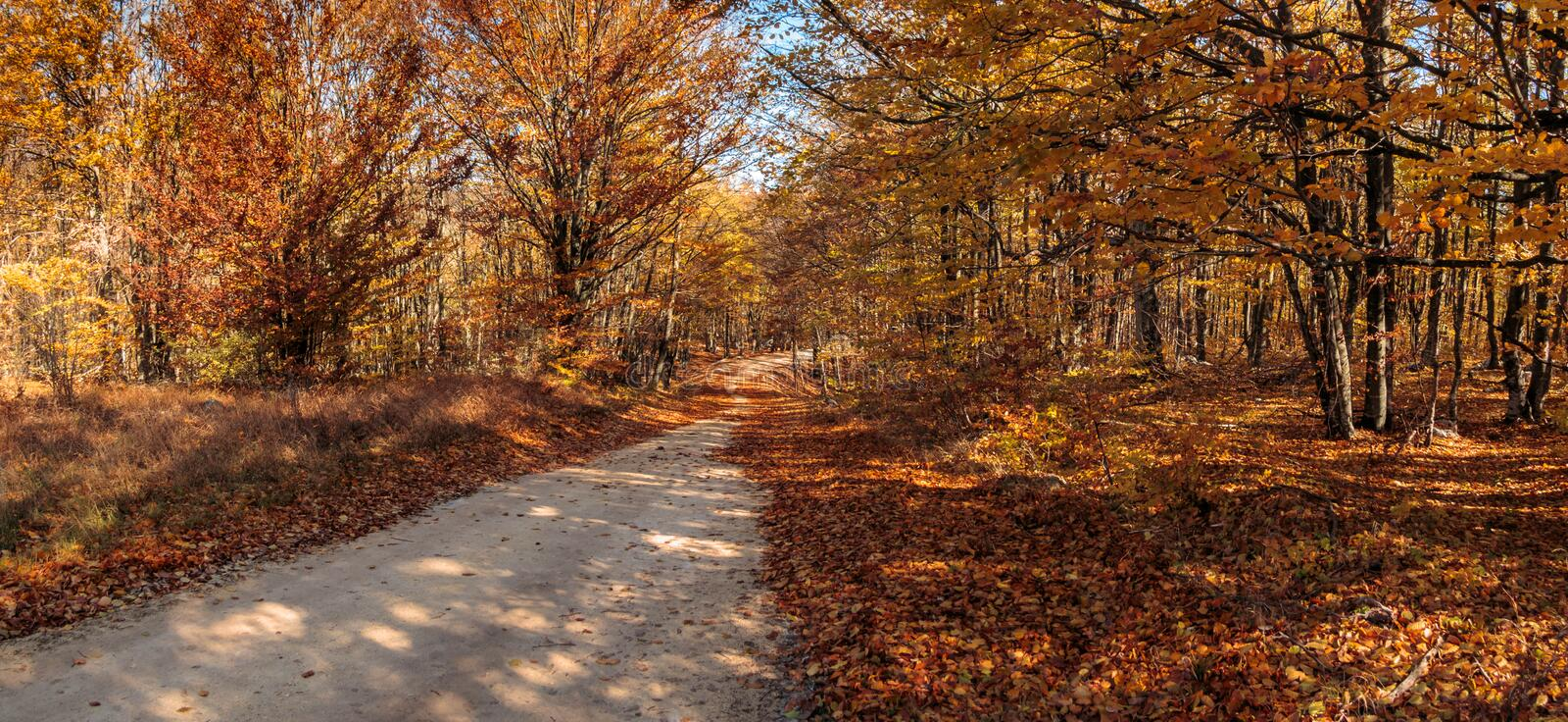 Autumn colors in country side stock photo
