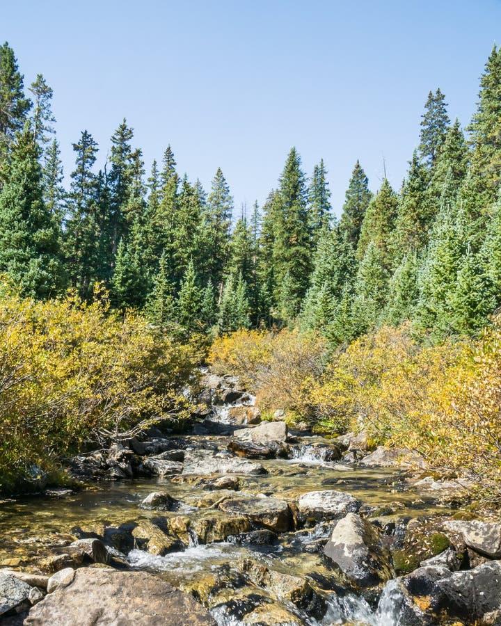 Autumn Colors, crique de pin, région sauvage collégiale de crêtes, Pike et images stock