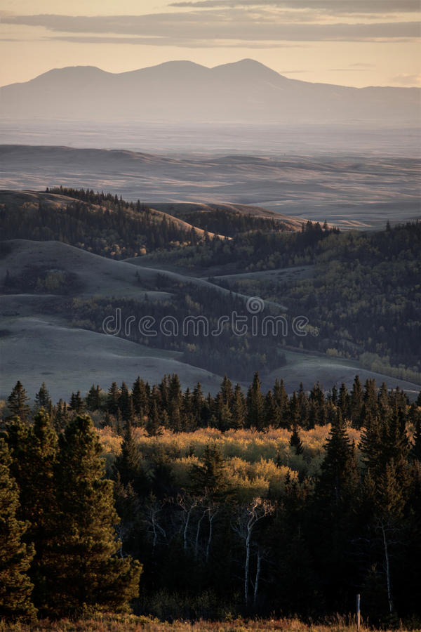 Autumn Colors Cypress Hills Canada imagens de stock royalty free