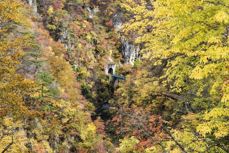 Autumn Colors de Naruko-gorge au Japon images libres de droits