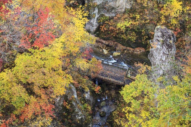 Autumn Colors de Naruko-gorge au Japon photo libre de droits