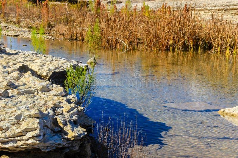 Autumn Colors em San Gabriel River imagem de stock