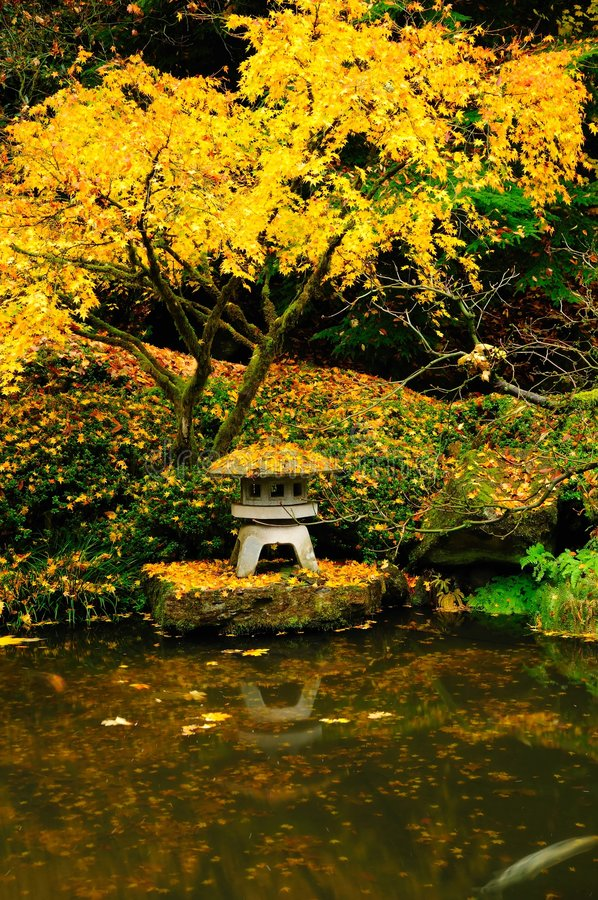 Download Autumn colors in a garden stock photo. Image of water - 7041982