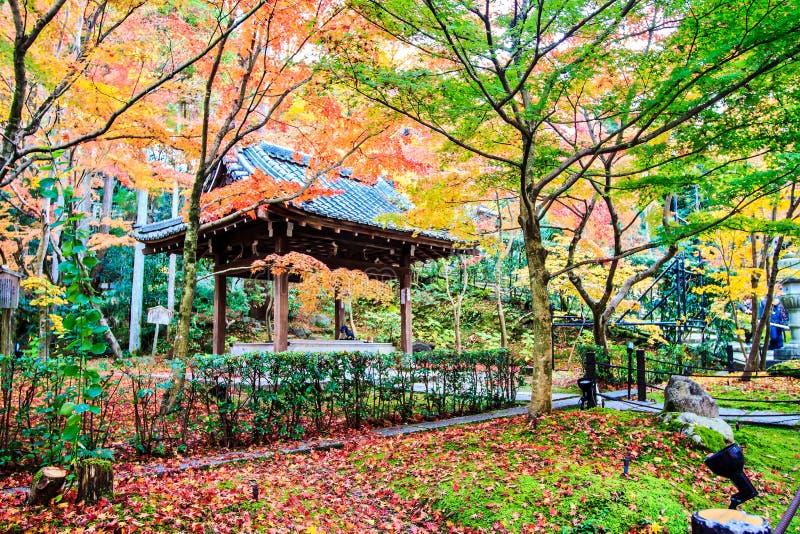Autumn Colors i den Eikando templet, Kyoto, Kansai, Japan royaltyfri foto