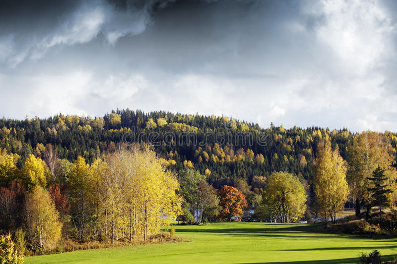 Autumn Colors And Landscape Royalty Free Stock Image