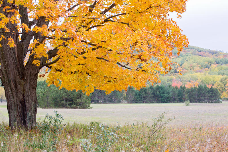 Autumn colors, Michigan, Sleeping Bear National Lakeshore. Autumn colors in the historic rural district in Sleeping Bear National Lakeshore, Michigan stock images