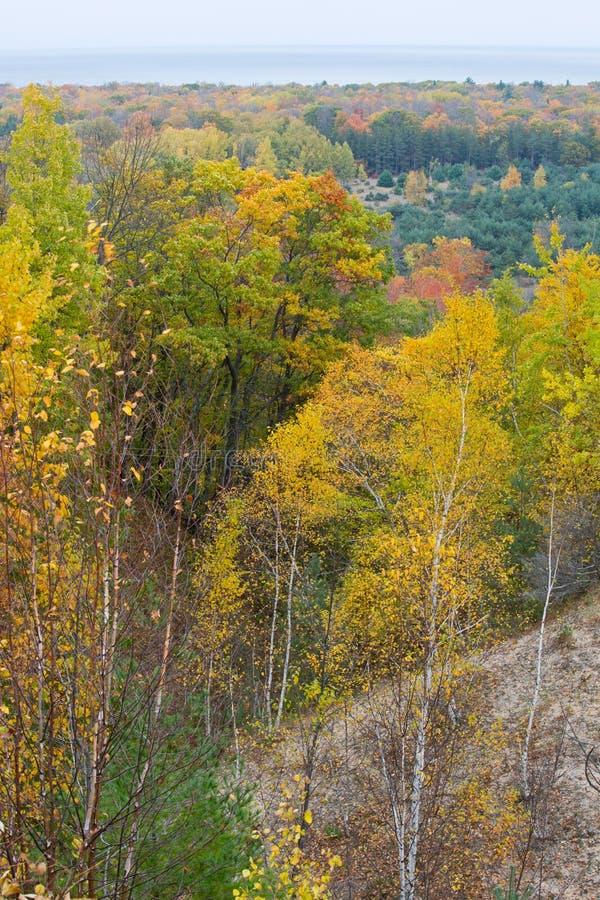 Autumn colors, Michigan, Sleeping Bear National Lakeshore. Autumn colors in Sleeping Bear National Lakeshore with Lake Michigan in the background stock photography