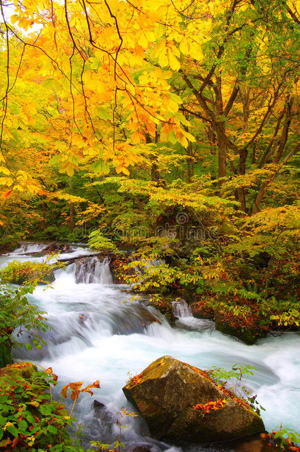 Download Autumn Colors Of Oirase River Stock Photo - Image: 17083204