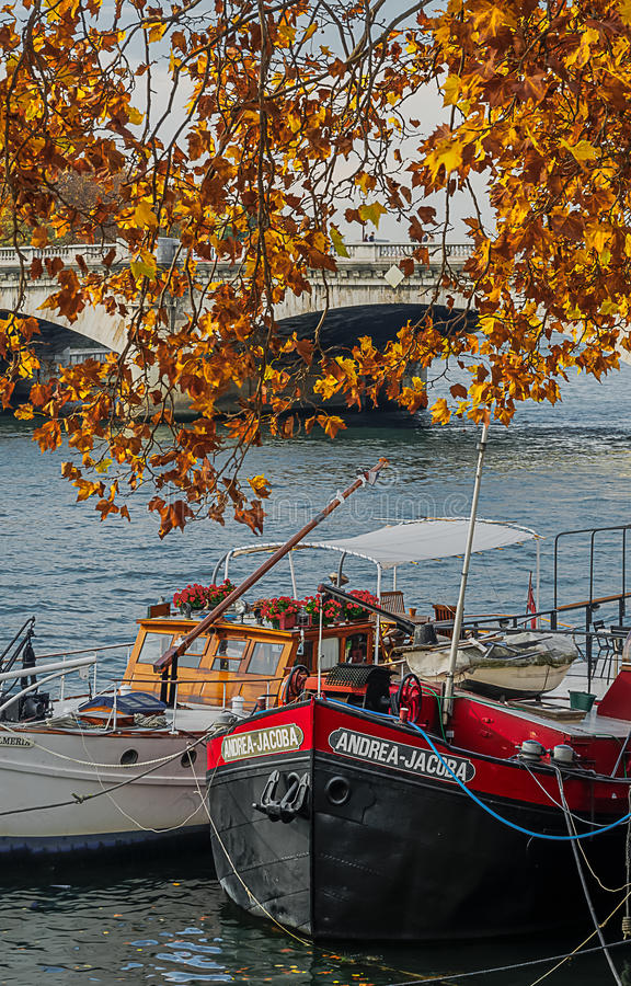 Free Autumn Colors On The Banks Of Paris Stock Photo - 80919030