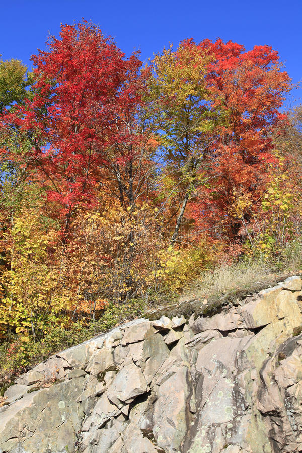 Autumn colors, Quebec royalty free stock photography