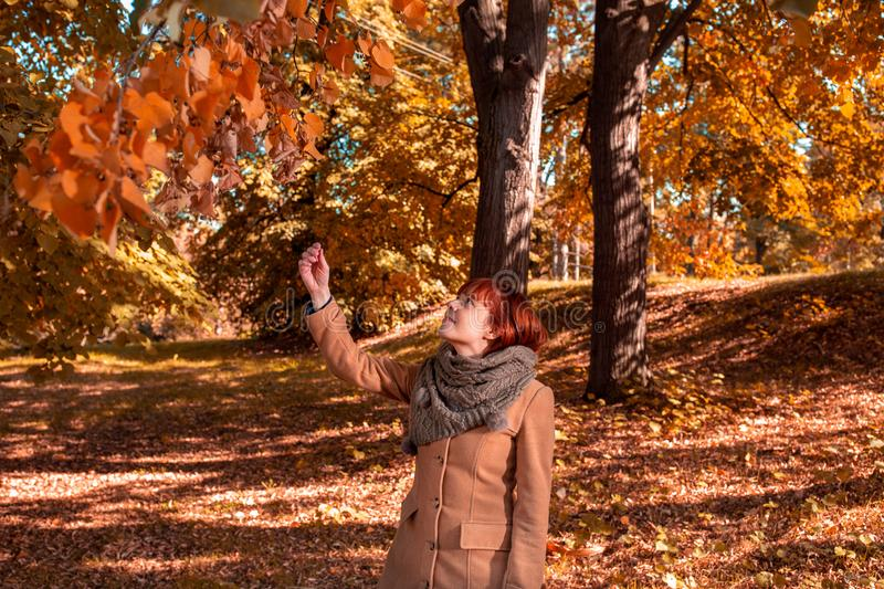 Autumn Colors- redhead woman enjoying in the autumn forest stock photos
