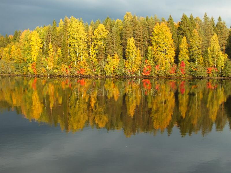 Autumn colors reflected in a lake royalty free stock photography