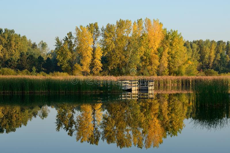 Autumn Colors Reflected su un lago fotografie stock libere da diritti