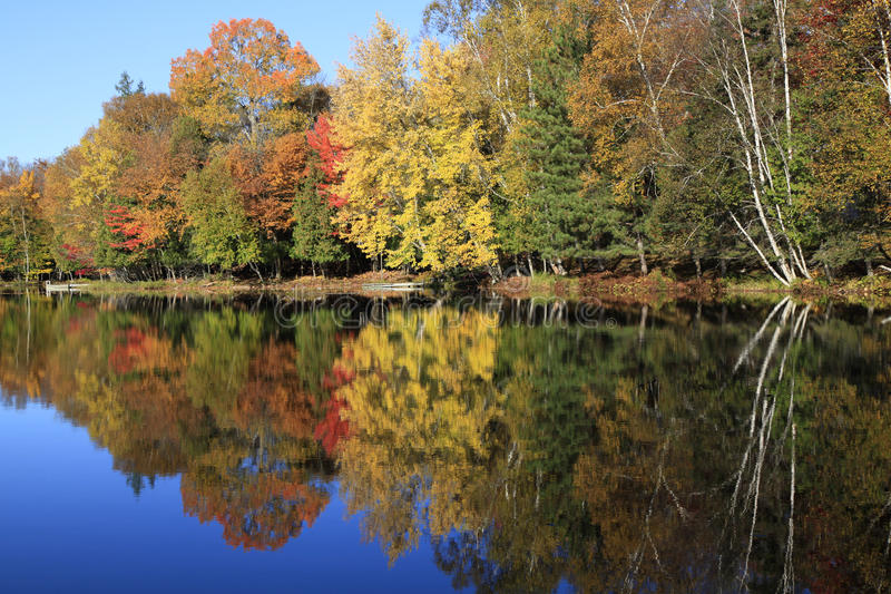 Autumn colors reflections on the lake, Quebec royalty free stock photo