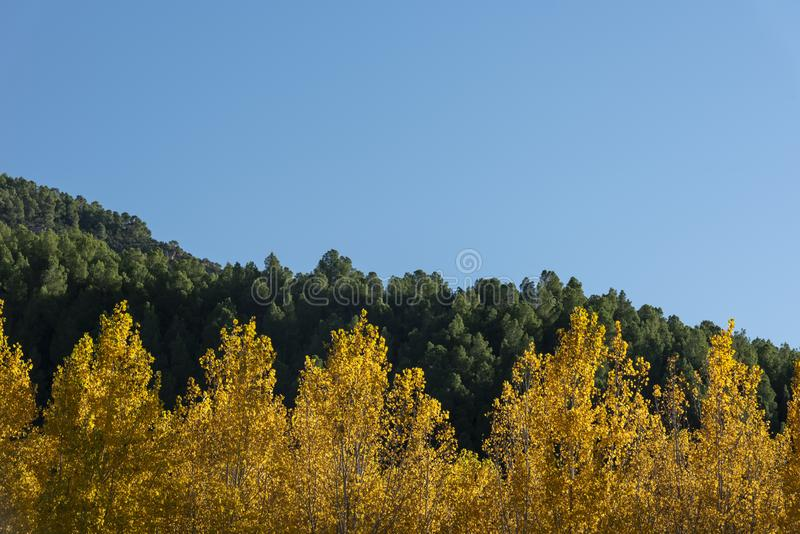 Autumn colors in Segura river, Sierra de los Molares, Yeste. Albacete province, Castilla-La Mancha. Spain royalty free stock photography