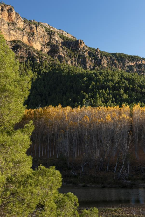 Autumn colors in Segura river, Sierra de los Molares, Yeste. Albacete province, Castilla-La Mancha. Spain stock photo
