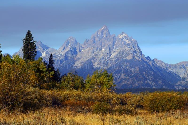 Autumn Colors storslagen Teton nationalpark, Wyoming royaltyfri bild
